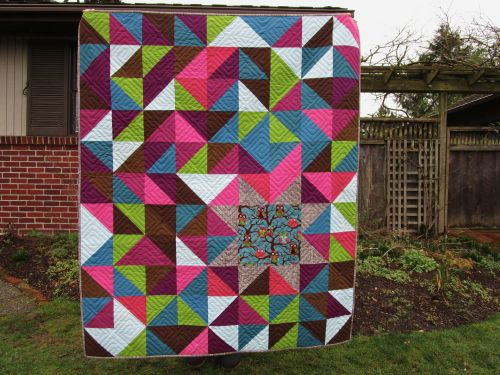 SEW KATIE DID:Sleepy Owl Quilt full