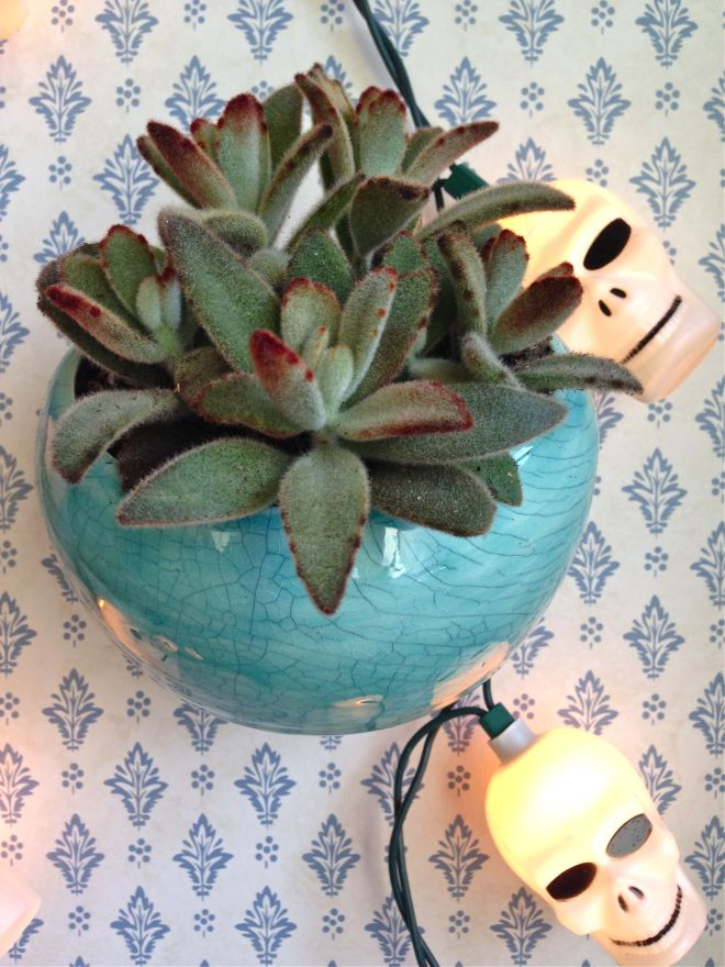 SEW KATIE DID:Planter